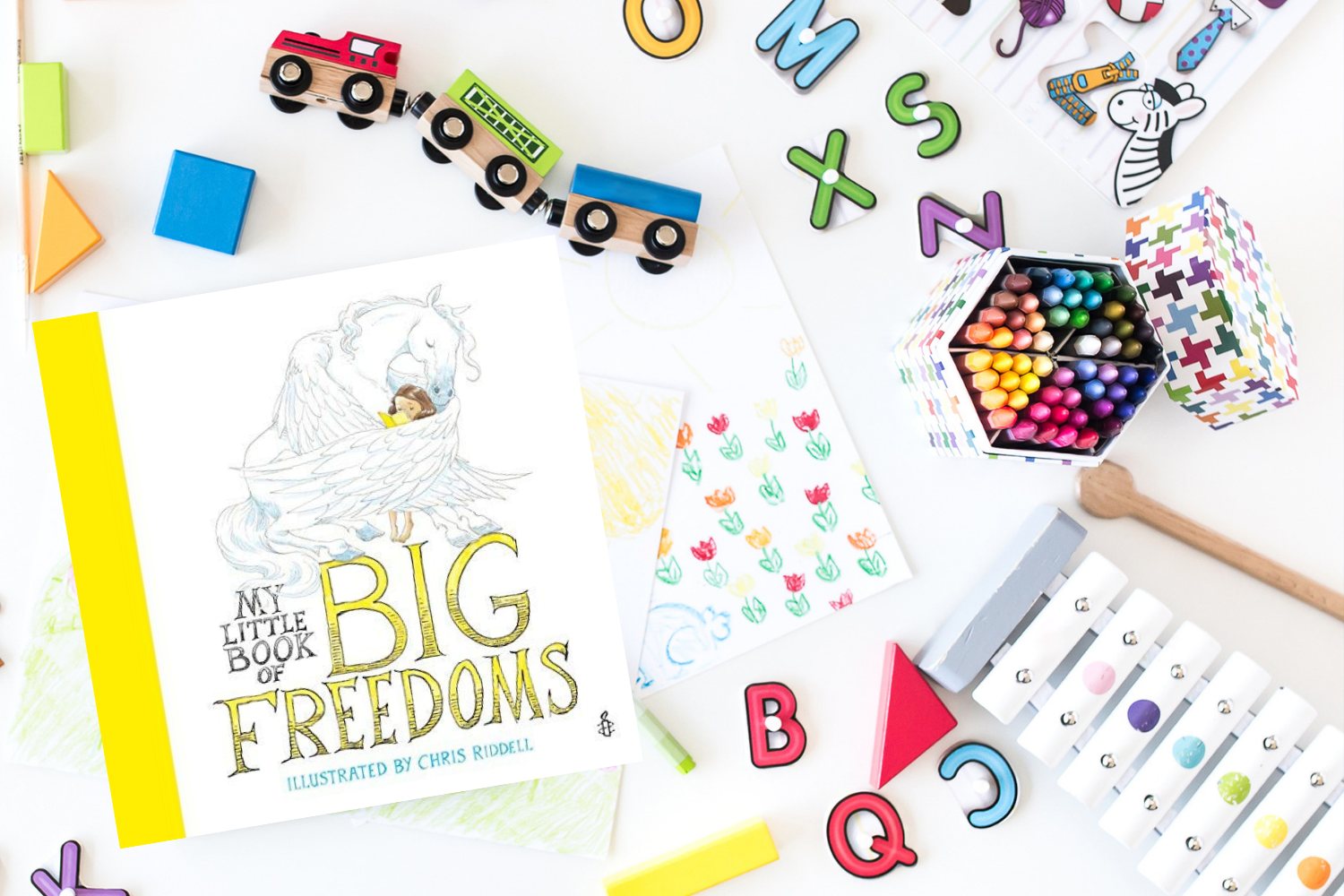 My Little Book of Big Freedoms - Books from Past Boxes of Tiny Humans Read Kids Book Subscription Box
