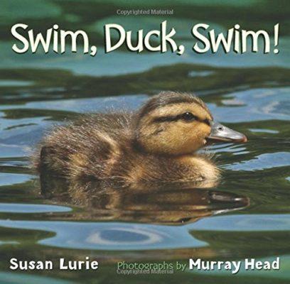 Swim Duck Swim Book